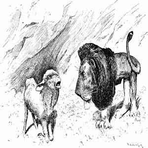 نقاشی سیاه و سفید شیر و گوسفند